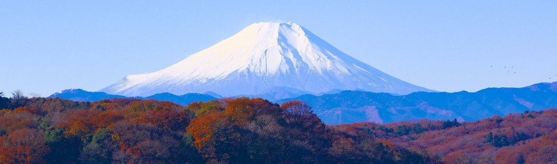 Did you know… 10 fun facts about Fuji!